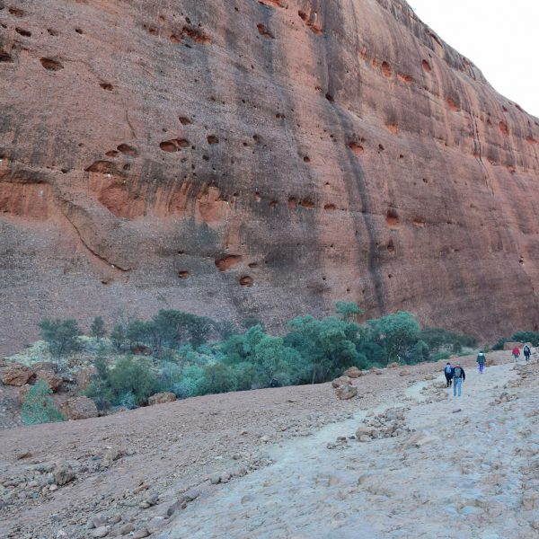 Just one of the valleys at Kata Tjuta